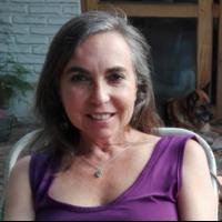 Soledad Santolaya Cohen